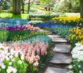 Holland_Amsterdam_KeukenhofGardens_Pathway_iS_9404816XXXLarge