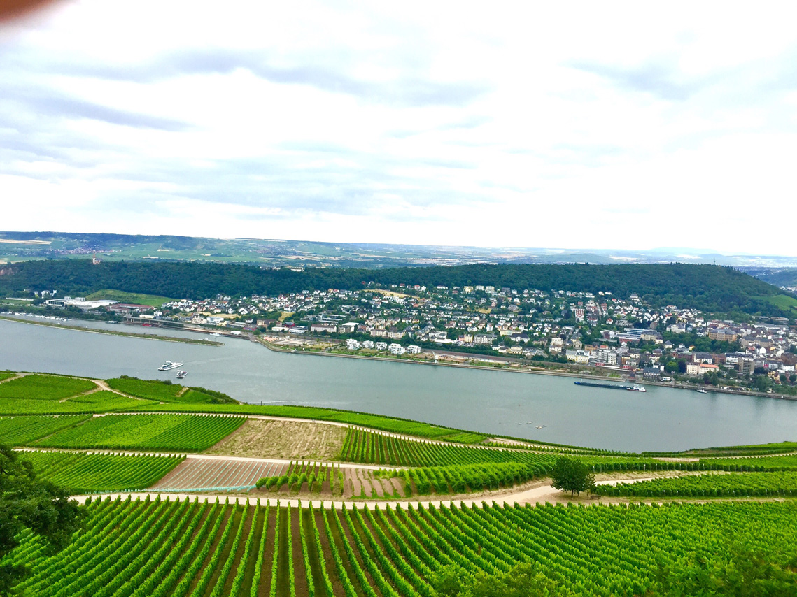 At top of cable car ride, find the Niederwald monument and magnificent views